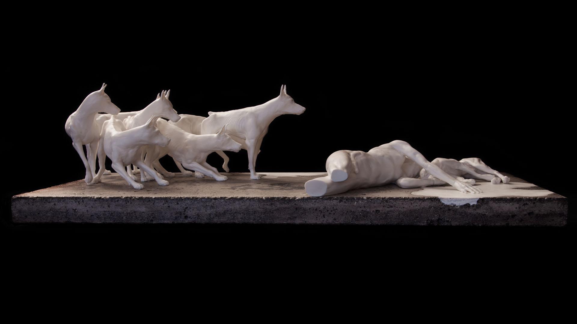 Entre chiens et loups (profil)